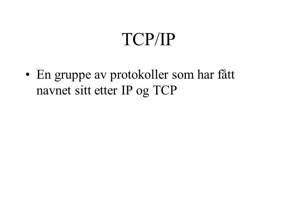 TCP/IP En gruppe av protokoller som har fått navnet sitt etter IP og TCP