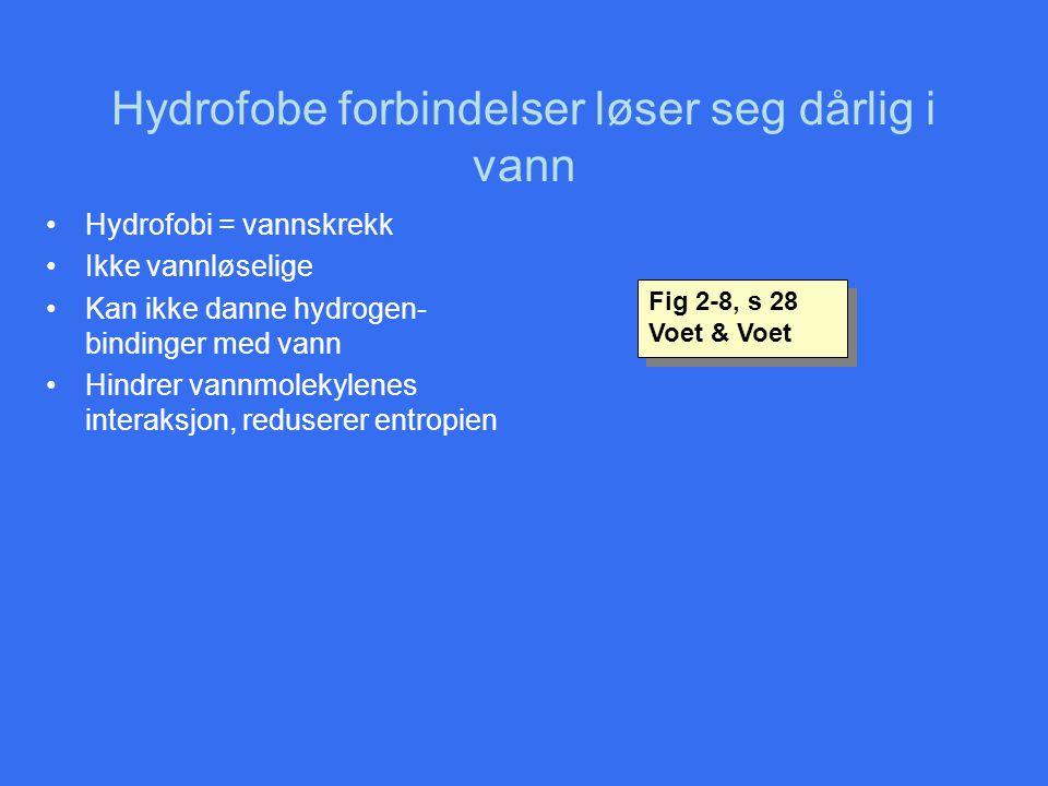 Hydrofobe forbindelser løser seg dårlig i vann