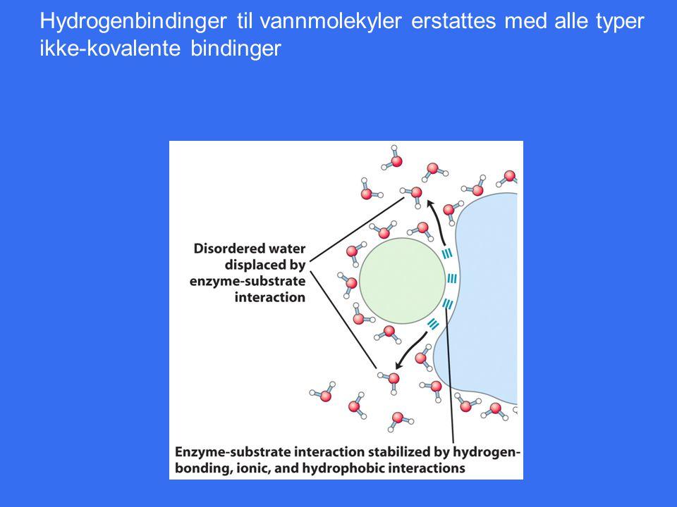Hydrogenbindinger til vannmolekyler erstattes med alle typer