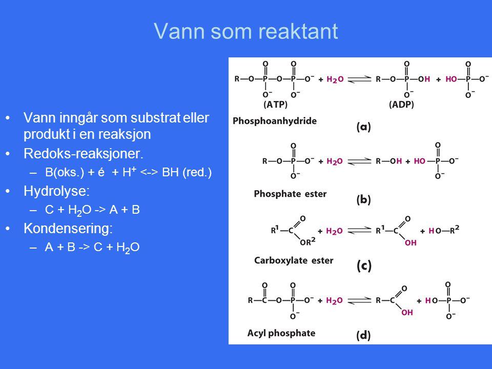 Vann som reaktant Vann inngår som substrat eller produkt i en reaksjon