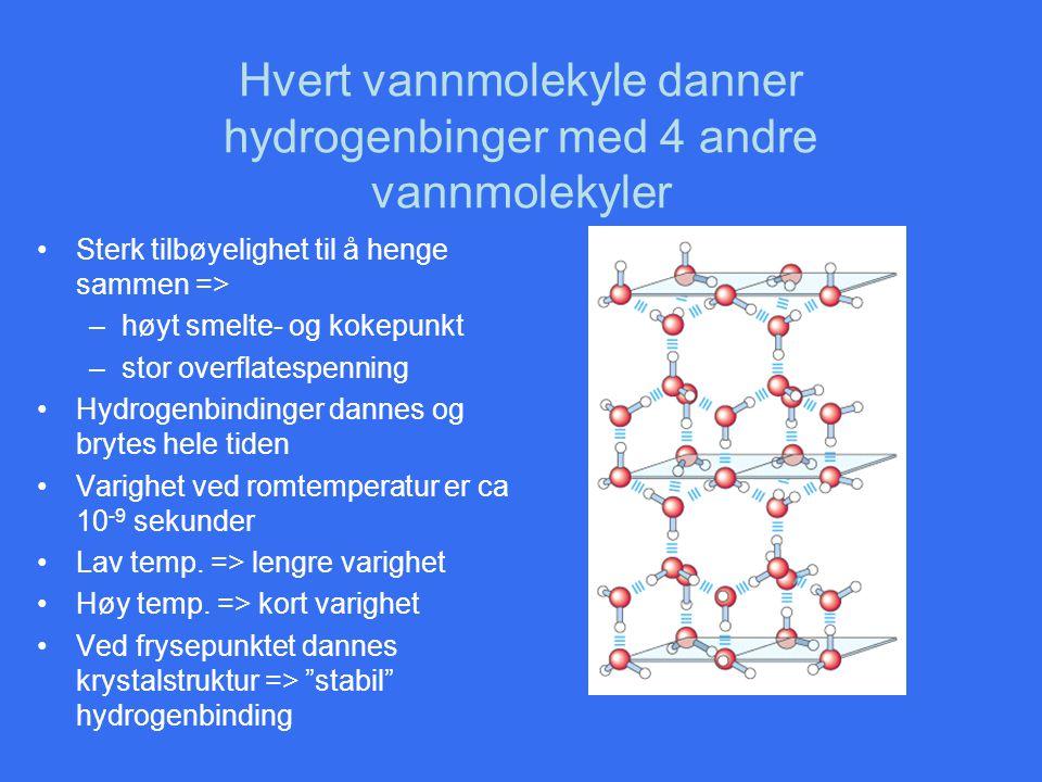 Hvert vannmolekyle danner hydrogenbinger med 4 andre vannmolekyler