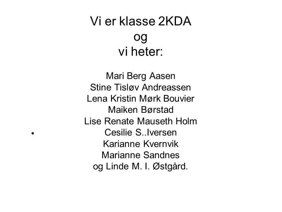 Vi er klasse 2KDA og vi heter: Mari Berg Aasen Stine Tisløv Andreassen Lena Kristin Mørk Bouvier Maiken Børstad Lise Renate Mauseth Holm Cesilie S..Iversen Karianne Kvernvik Marianne Sandnes og Linde M.