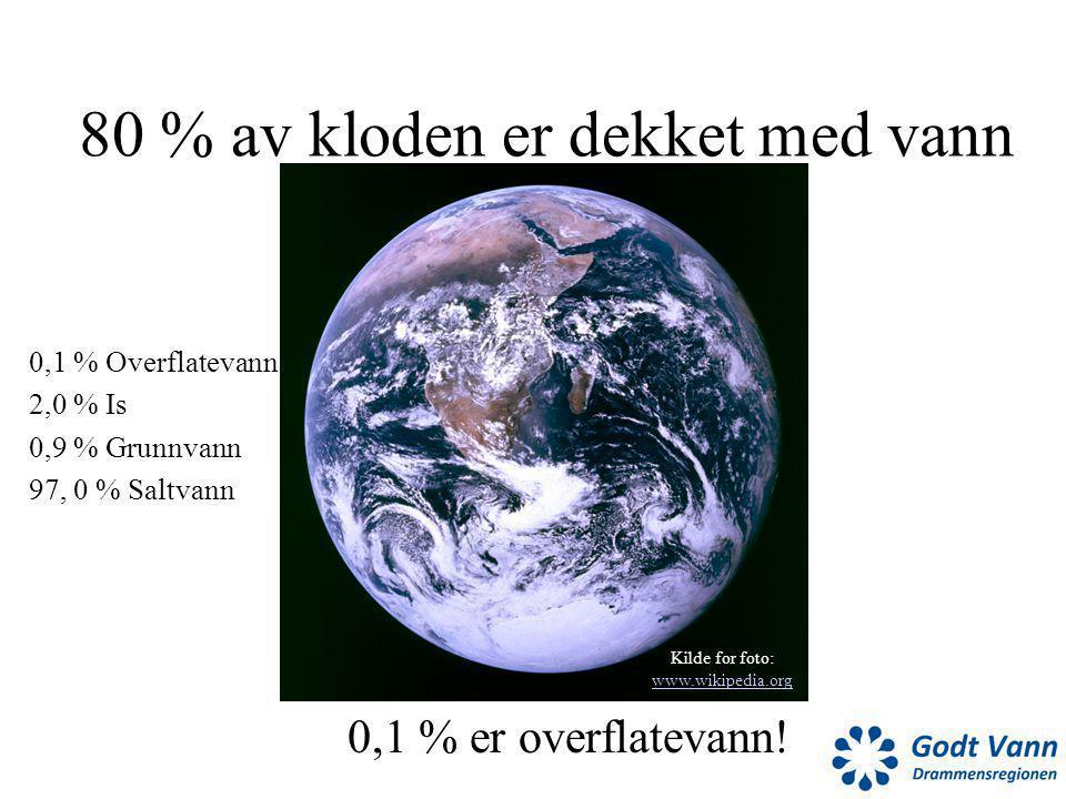 80 % av kloden er dekket med vann