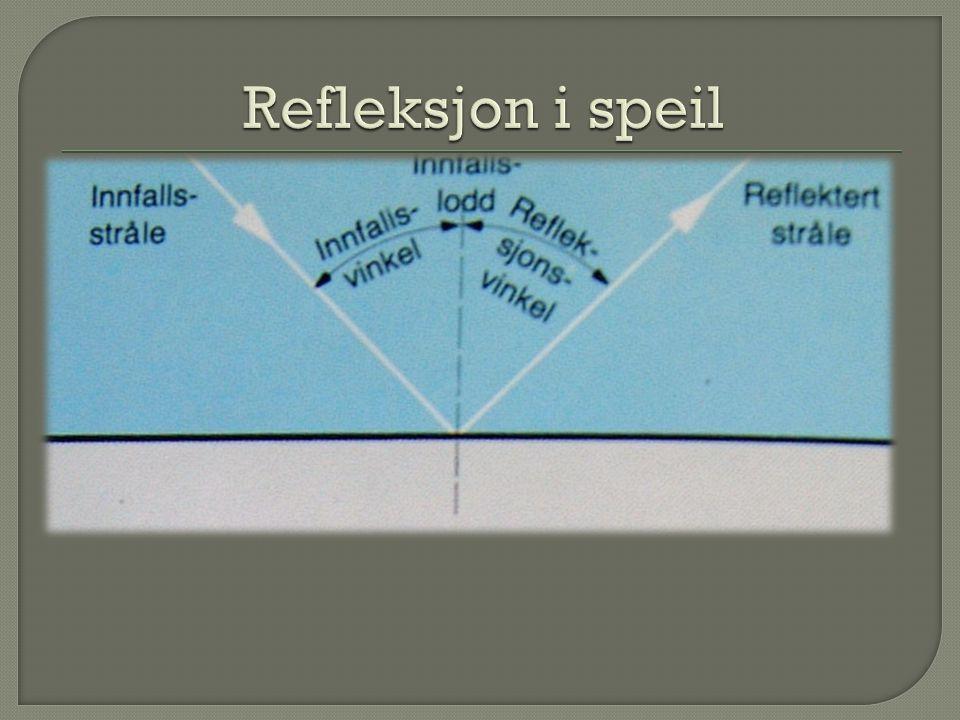 Refleksjon i speil