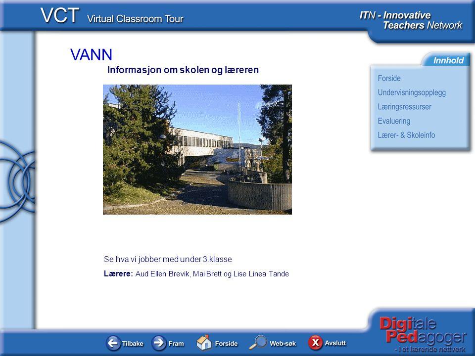 Informasjon om skolen og læreren