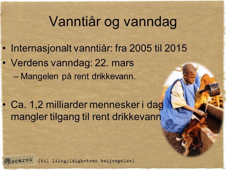 Vanntiår og vanndag Internasjonalt vanntiår: fra 2005 til 2015