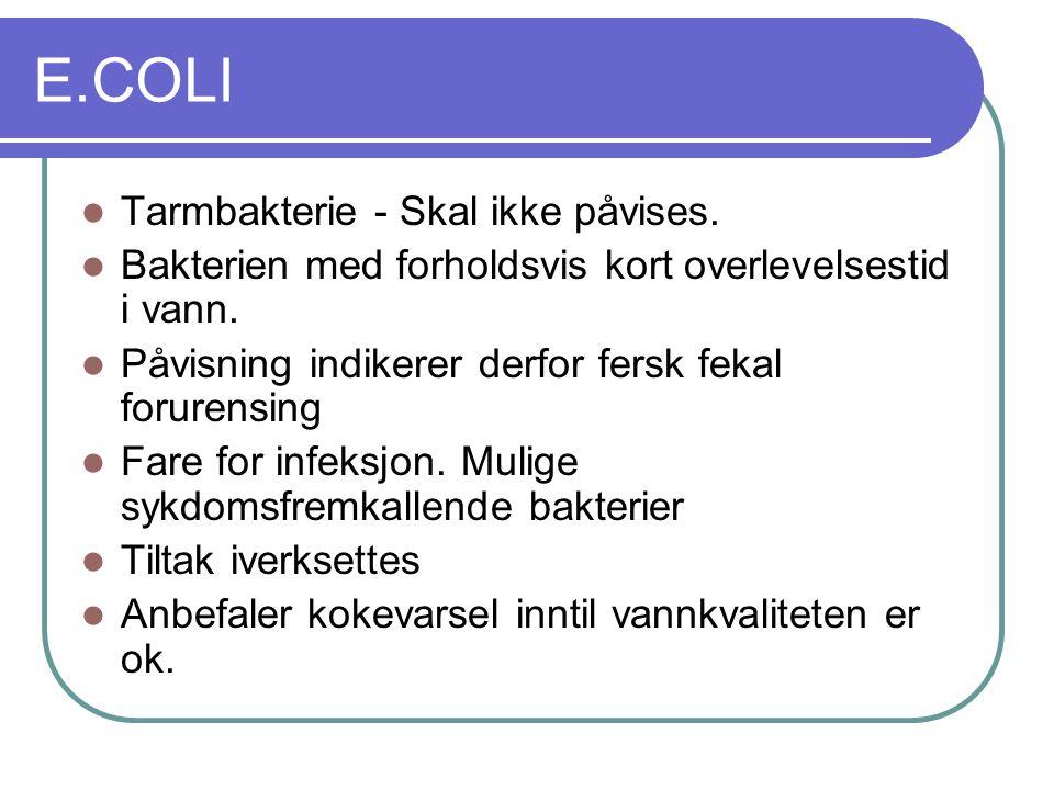 E.COLI Tarmbakterie - Skal ikke påvises.