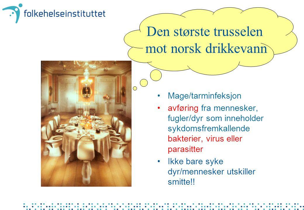 Den største trusselen mot norsk drikkevann Mage/tarminfeksjon