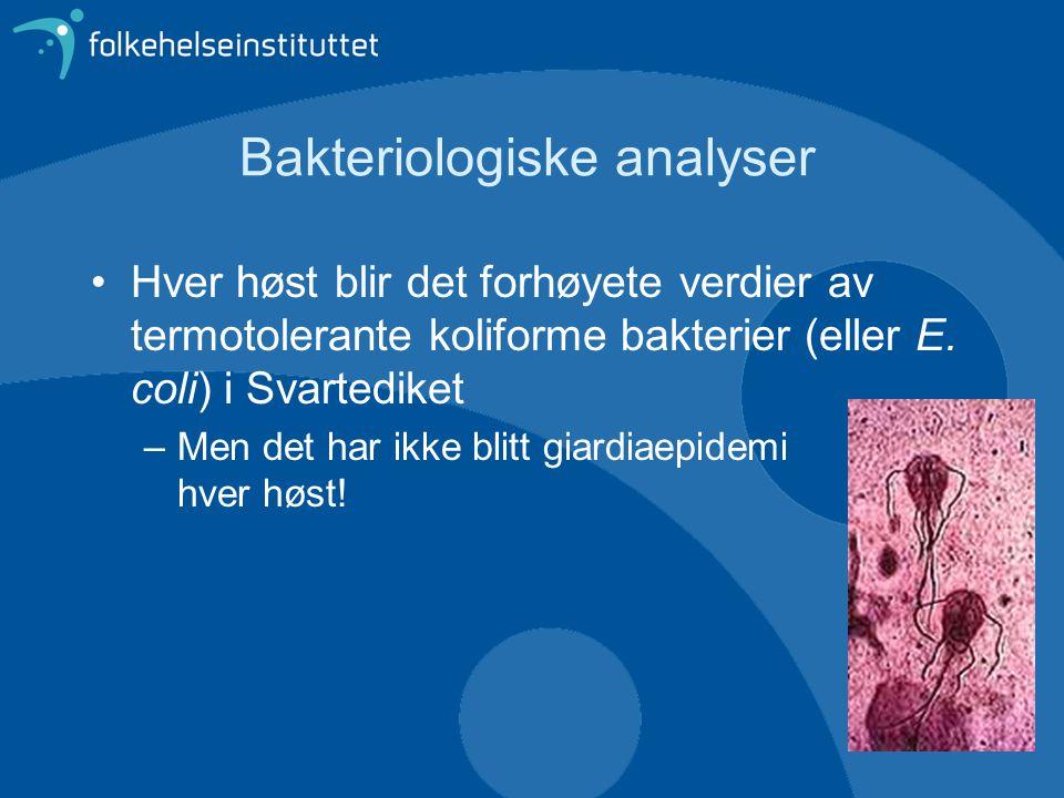 Bakteriologiske analyser