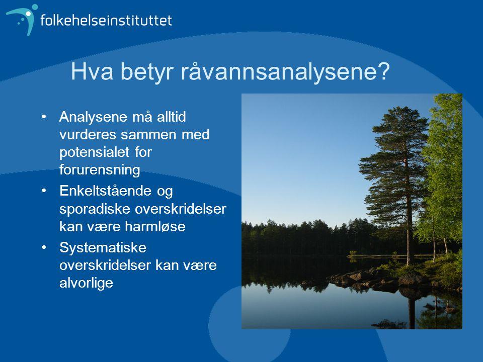Hva betyr råvannsanalysene