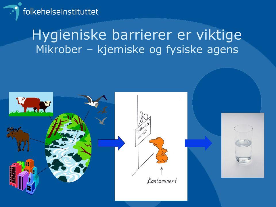 Hygieniske barrierer er viktige Mikrober – kjemiske og fysiske agens