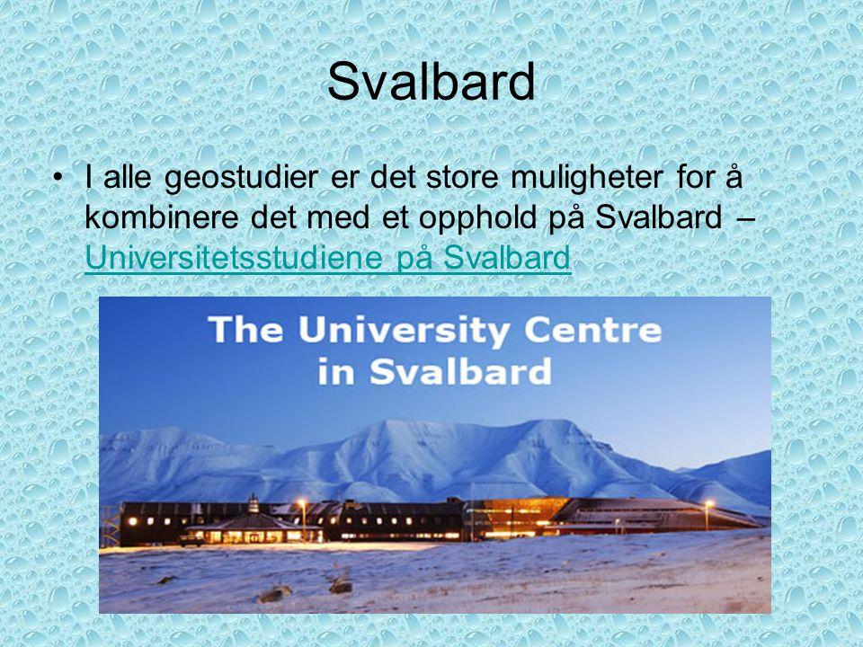 Svalbard I alle geostudier er det store muligheter for å kombinere det med et opphold på Svalbard – Universitetsstudiene på Svalbard.