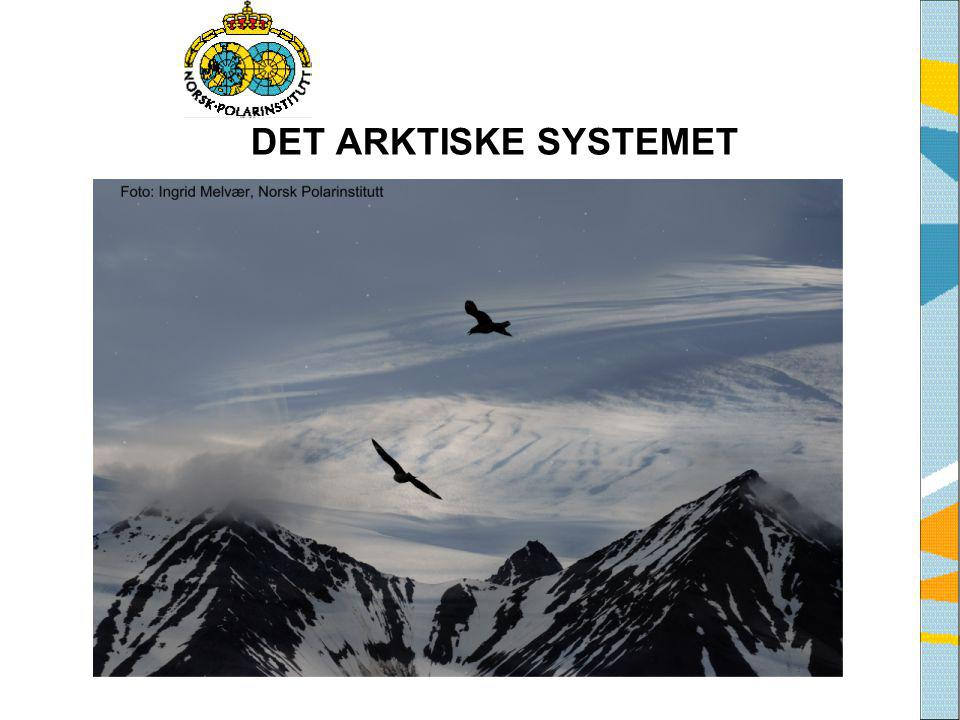 DET ARKTISKE SYSTEMET Tekst fra side 8 i heftet Det Arktiske System, eller siden Det Arktiske System på www.arcticsystem.no.