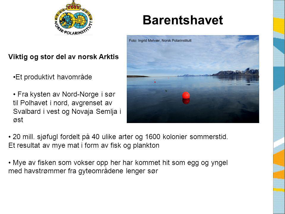 Barentshavet Viktig og stor del av norsk Arktis