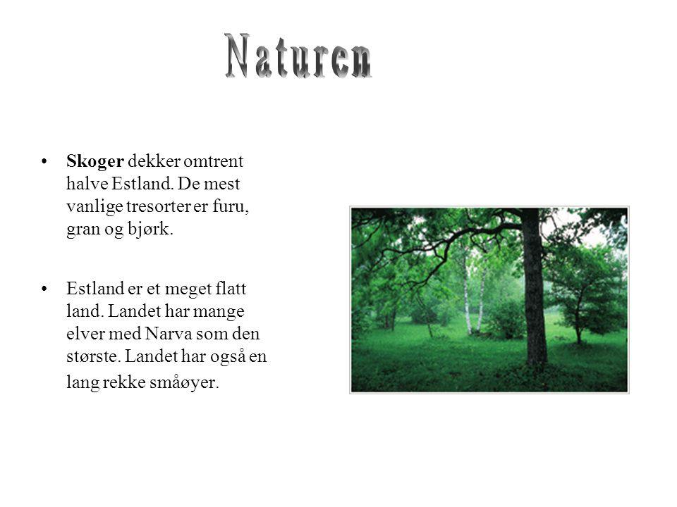 Naturen Skoger dekker omtrent halve Estland. De mest vanlige tresorter er furu, gran og bjørk.