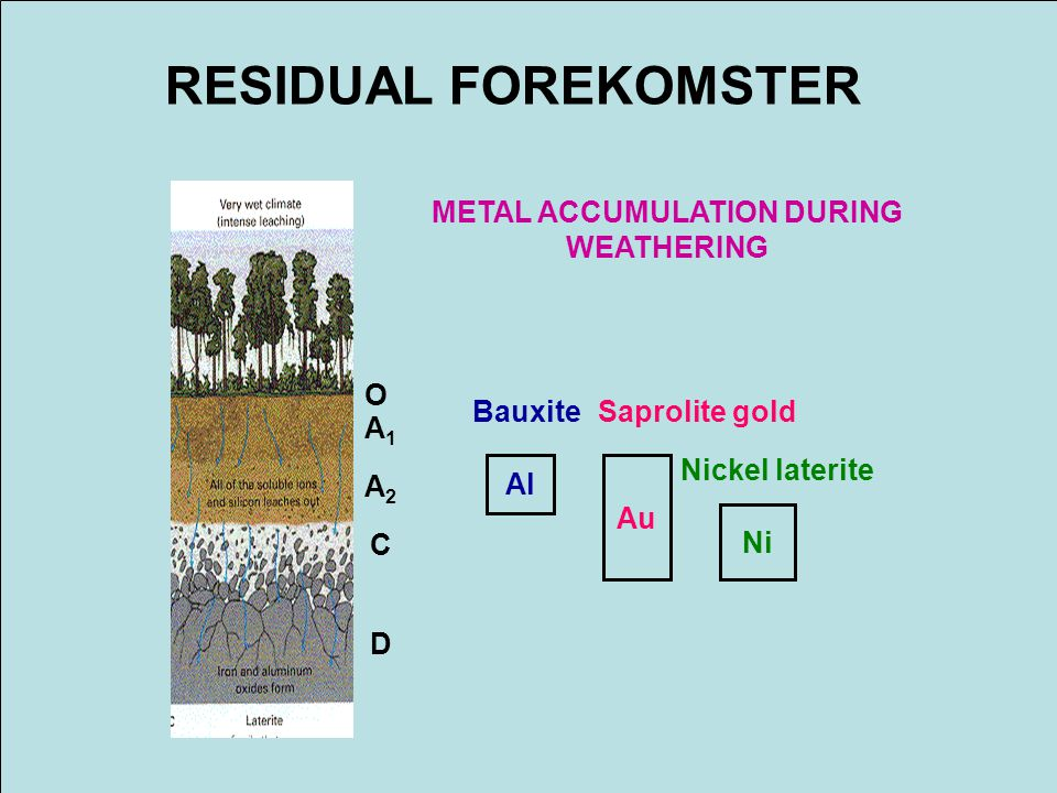 METAL ACCUMULATION DURING