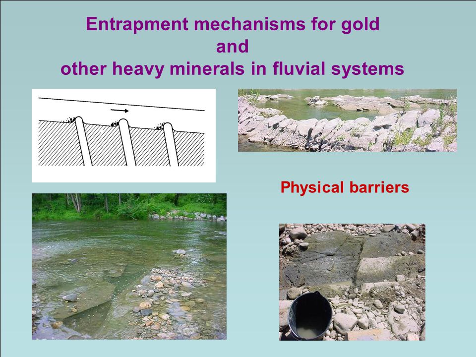 Entrapment mechanisms for gold other heavy minerals in fluvial systems