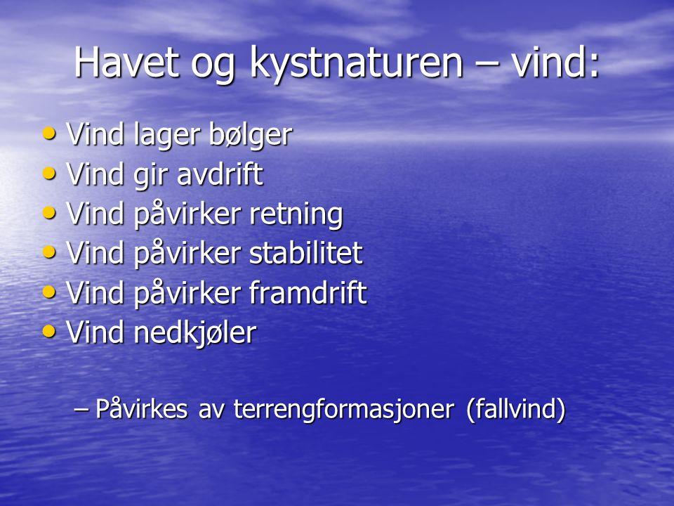 Havet og kystnaturen – vind:
