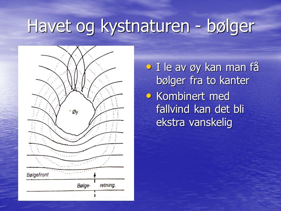 Havet og kystnaturen - bølger