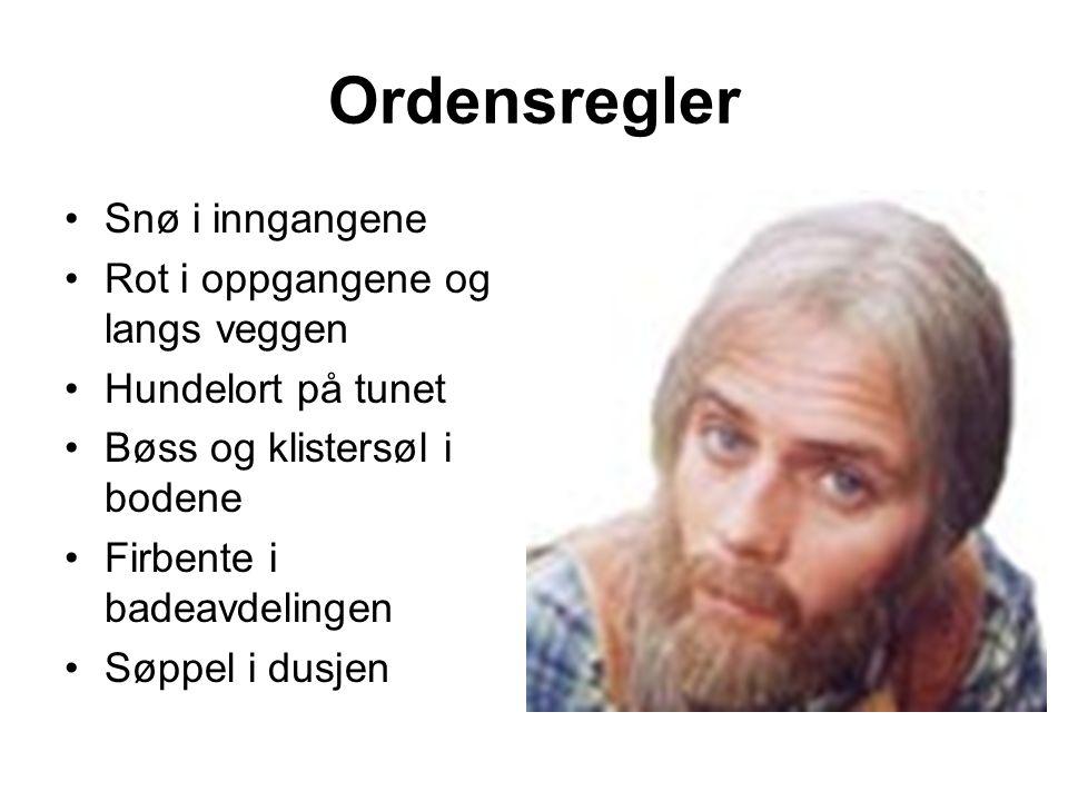 Ordensregler Snø i inngangene Rot i oppgangene og langs veggen