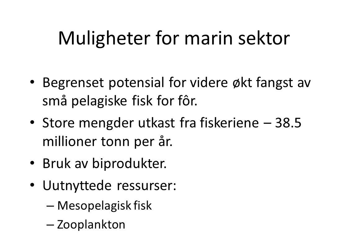 Muligheter for marin sektor