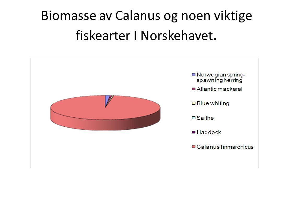 Biomasse av Calanus og noen viktige fiskearter I Norskehavet.