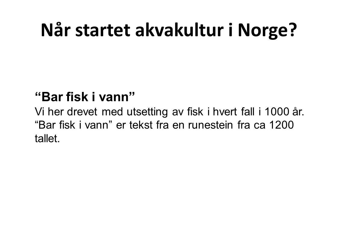 Når startet akvakultur i Norge
