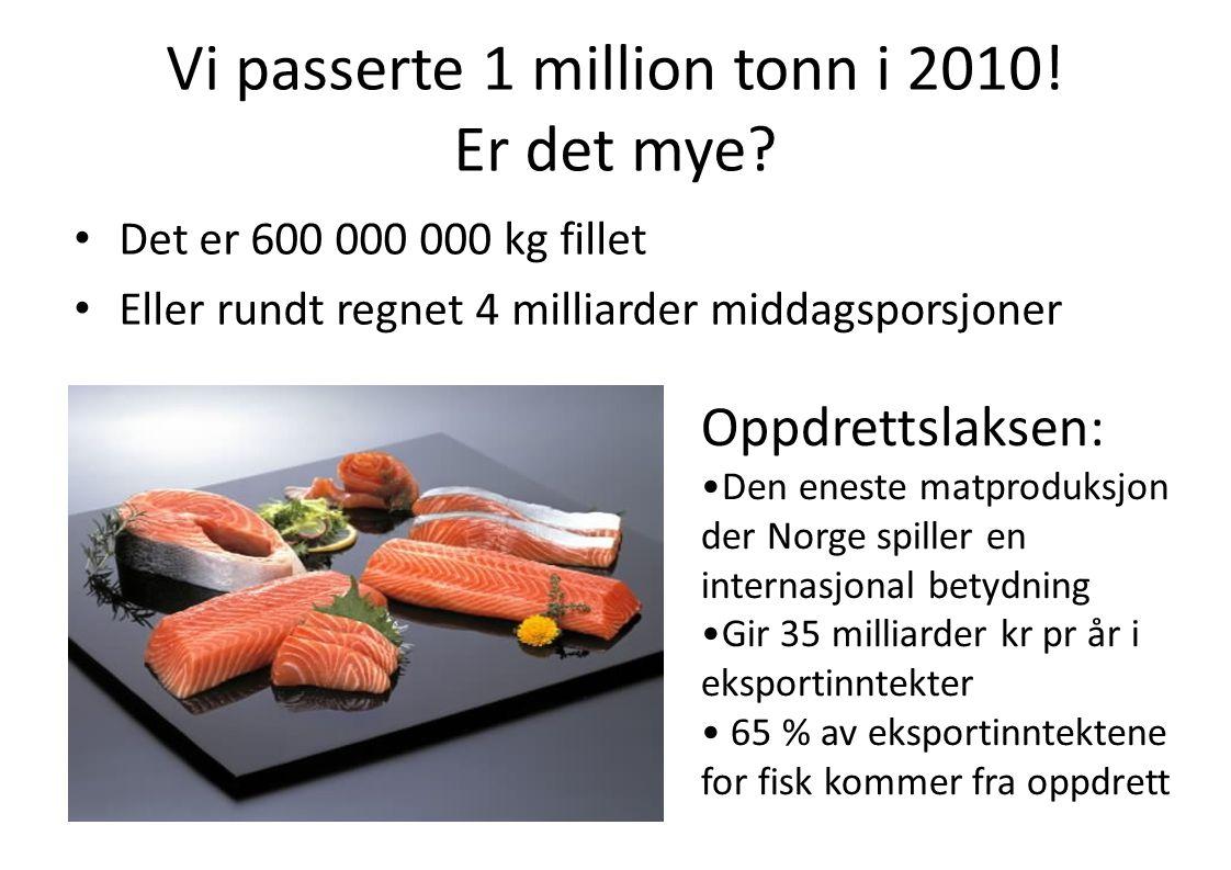 Vi passerte 1 million tonn i 2010! Er det mye
