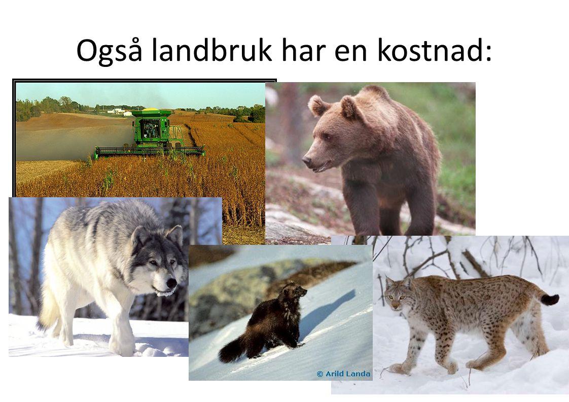 Også landbruk har en kostnad: