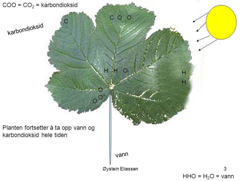 COO = CO2 = karbondioksid