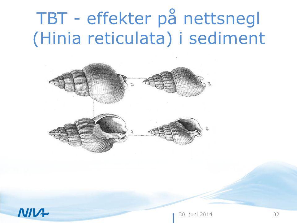 TBT - effekter på nettsnegl (Hinia reticulata) i sediment