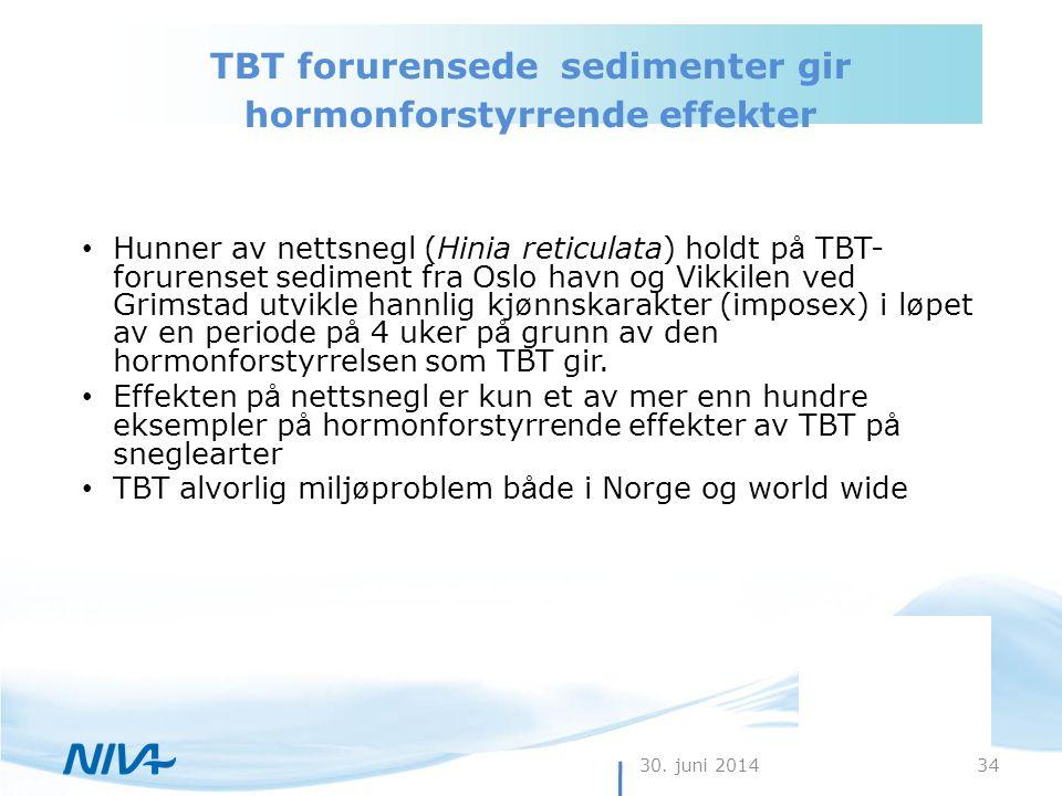 TBT forurensede sedimenter gir hormonforstyrrende effekter