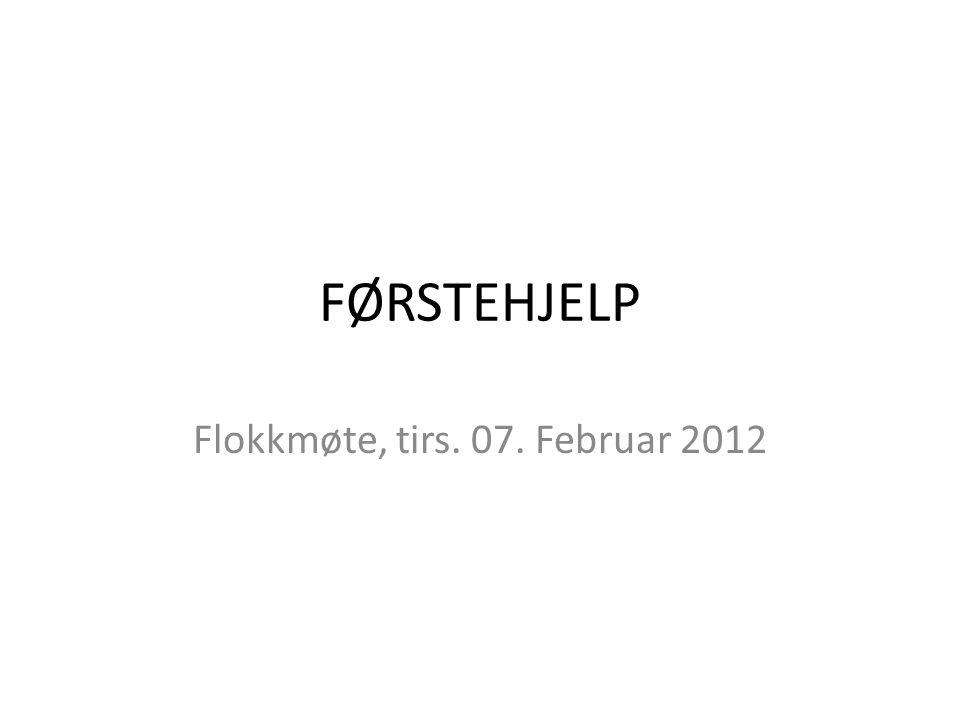 Flokkmøte, tirs. 07. Februar 2012