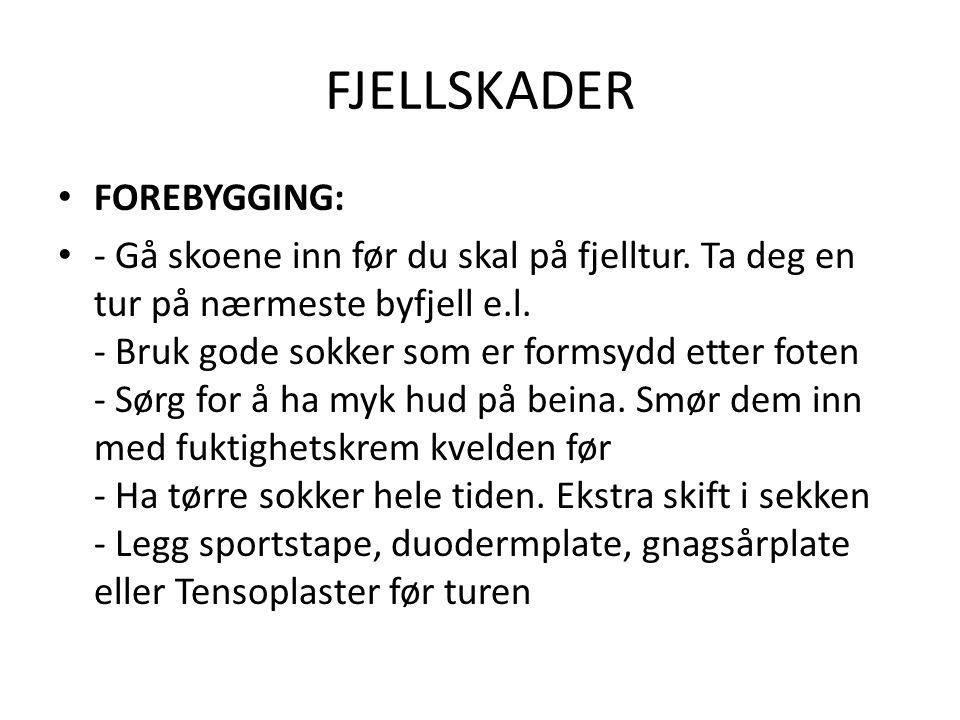 FJELLSKADER FOREBYGGING: