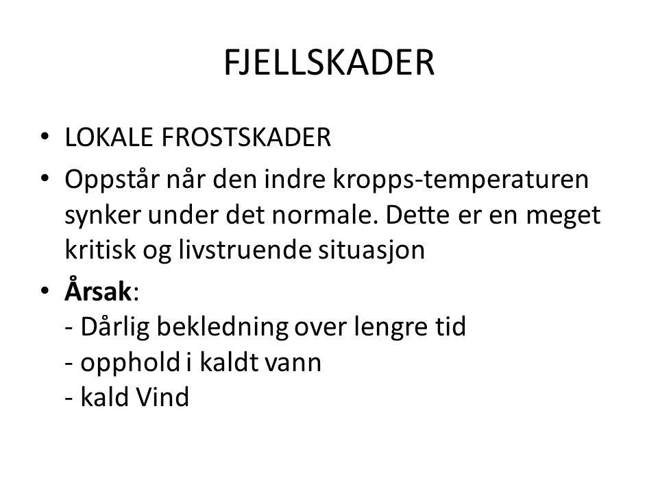 FJELLSKADER LOKALE FROSTSKADER