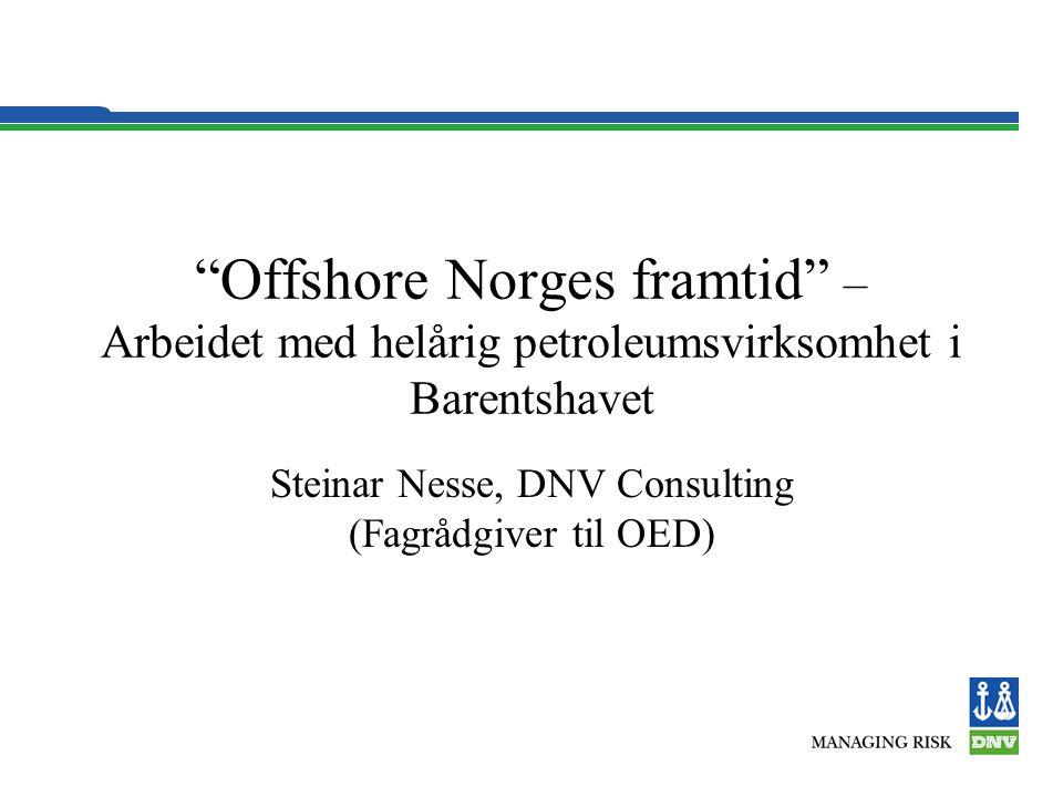 Steinar Nesse, DNV Consulting (Fagrådgiver til OED)