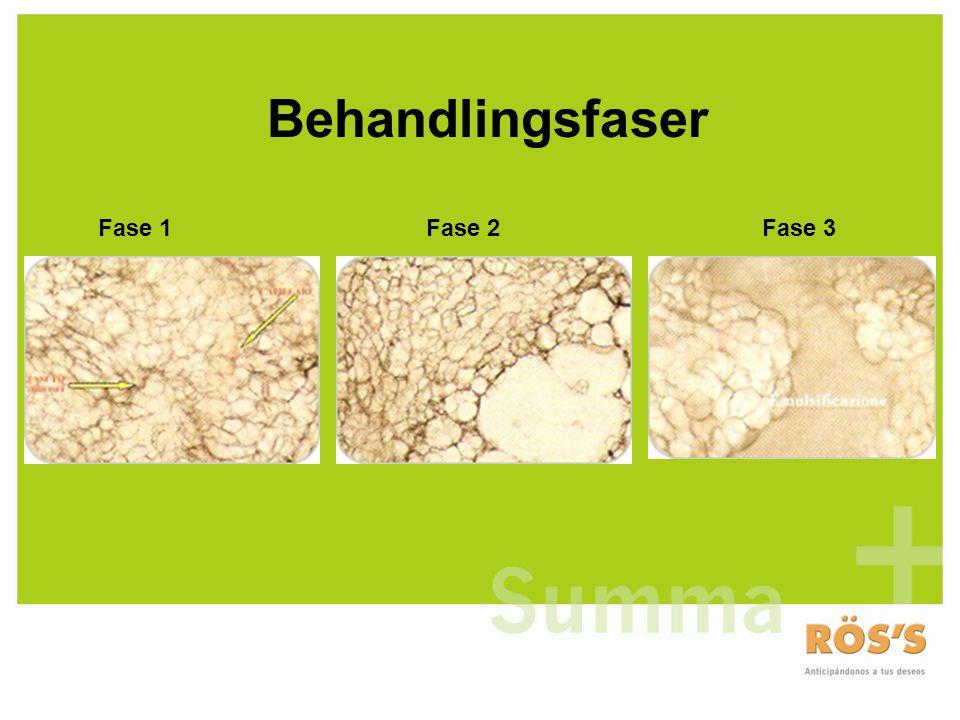 Behandlingsfaser Fase 1 Fase 2 Fase 3