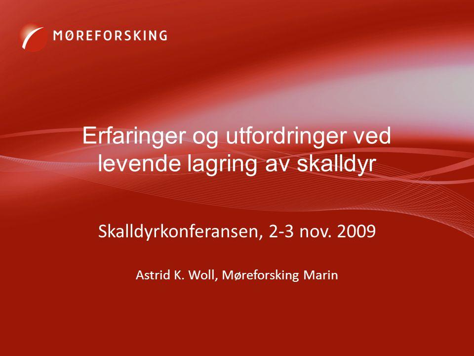 Erfaringer og utfordringer ved levende lagring av skalldyr