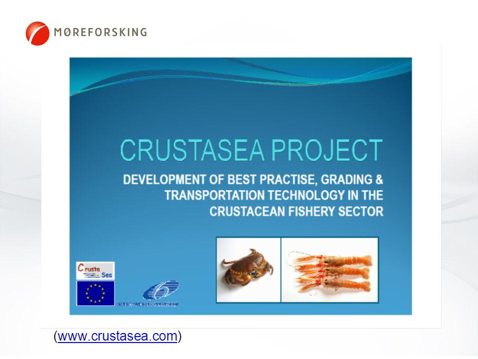 Crustasea (www.crustasea.com)