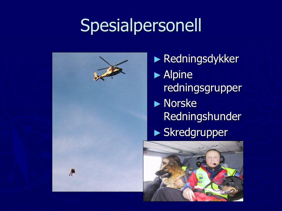 Spesialpersonell Redningsdykker Alpine redningsgrupper