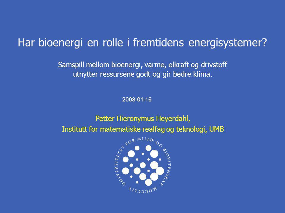 Har bioenergi en rolle i fremtidens energisystemer