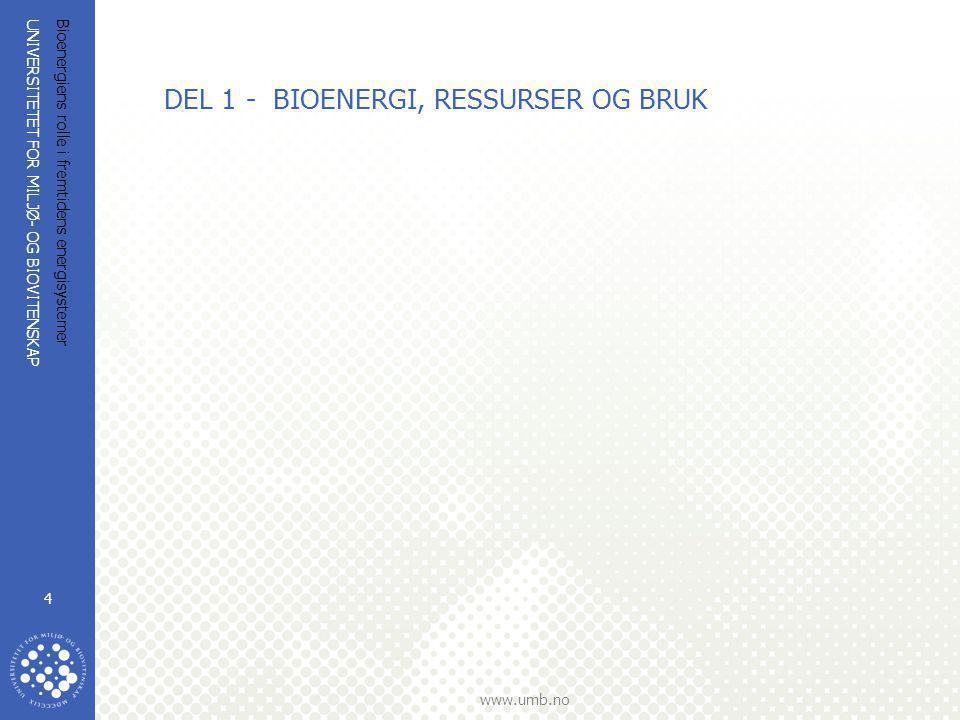 DEL 1 - BIOENERGI, RESSURSER OG BRUK