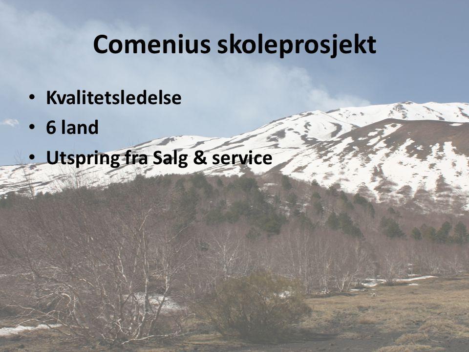 Comenius skoleprosjekt