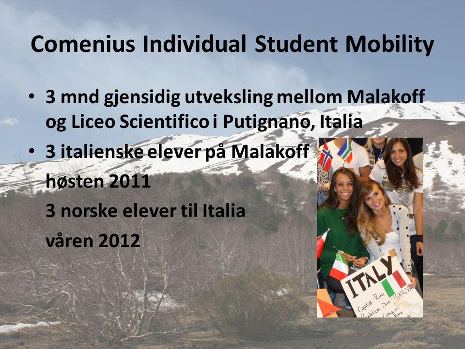 Comenius Individual Student Mobility