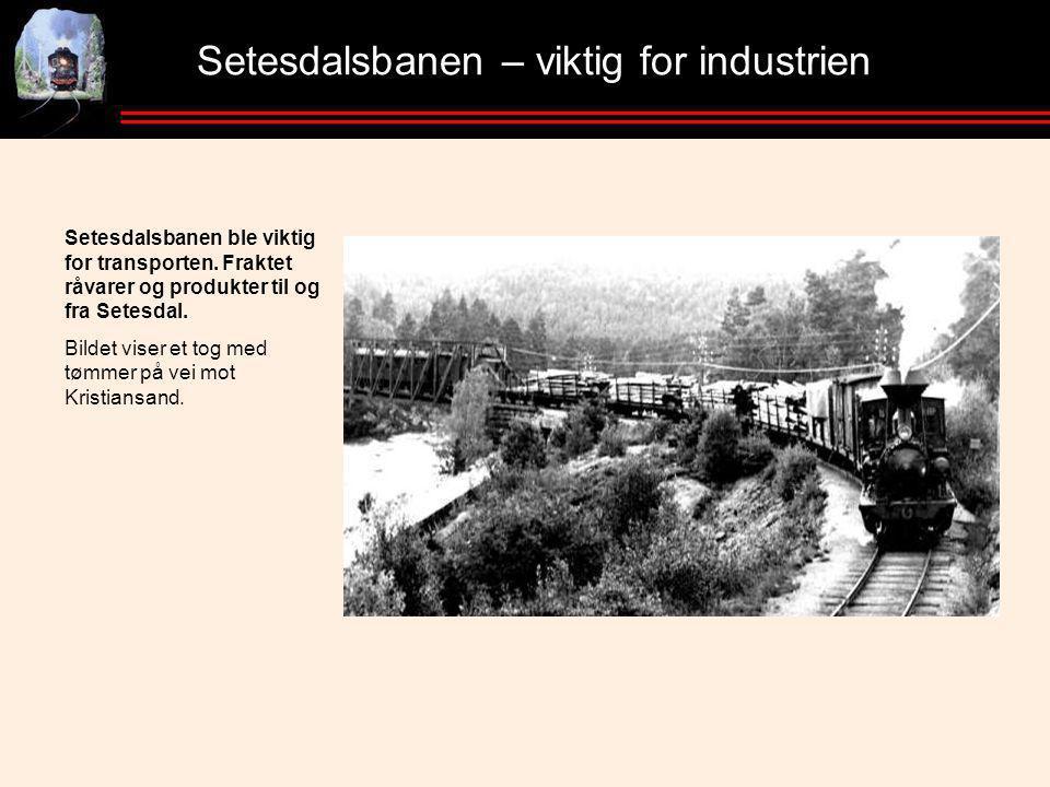 Setesdalsbanen – viktig for industrien