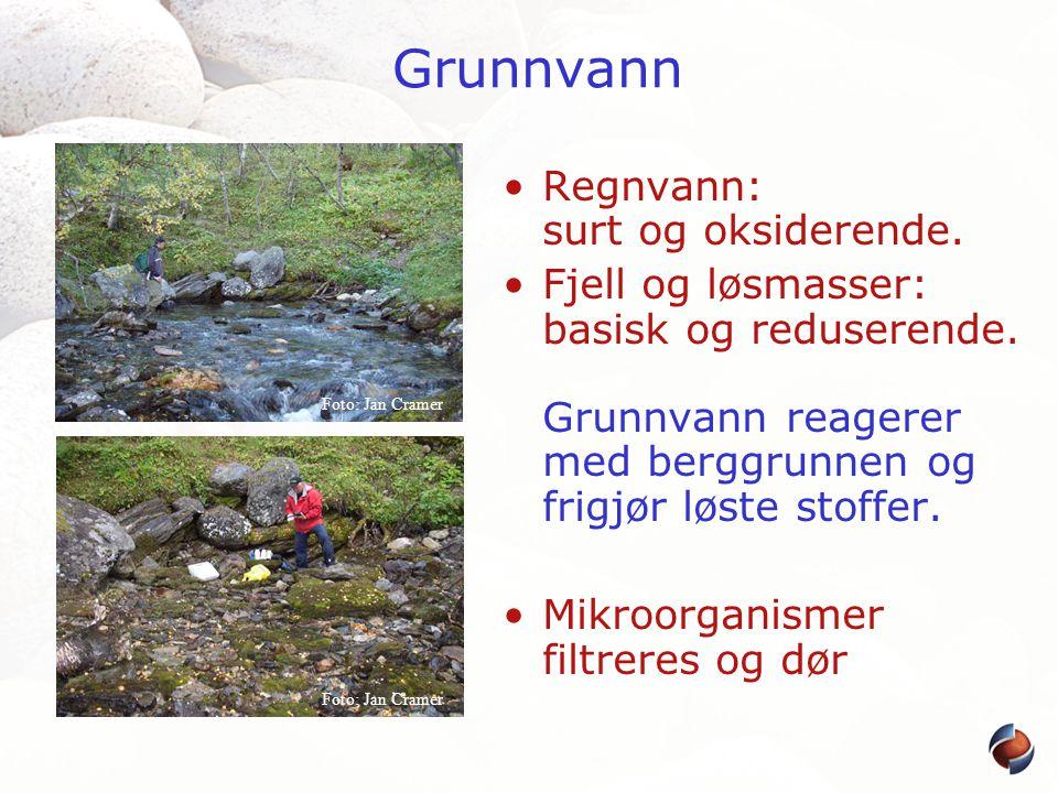 Grunnvann Regnvann: surt og oksiderende.