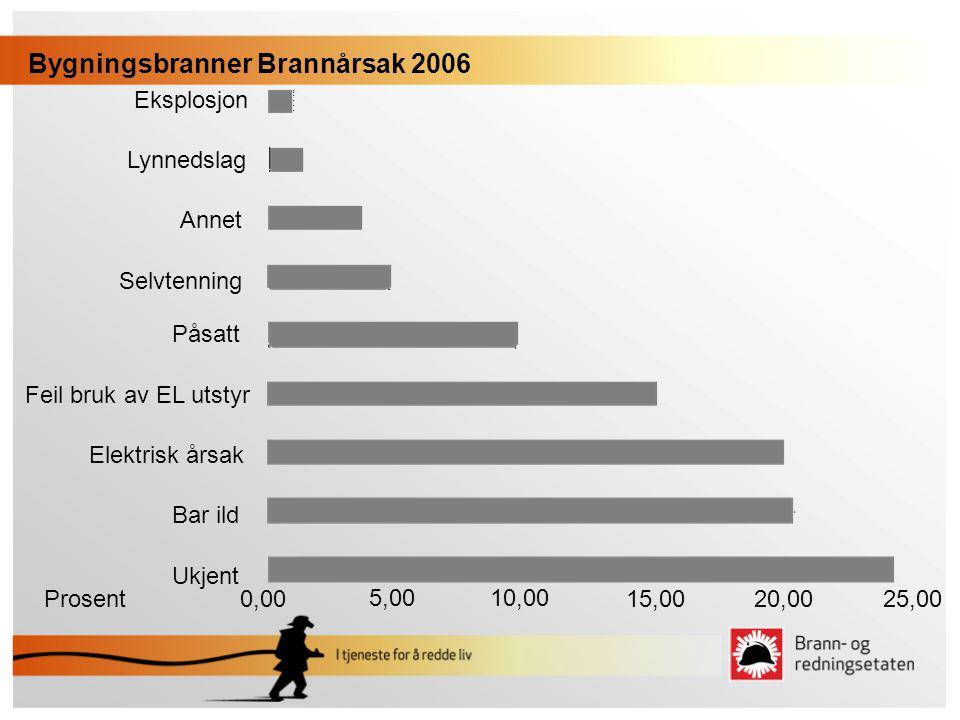 Bygningsbranner Brannårsak 2006