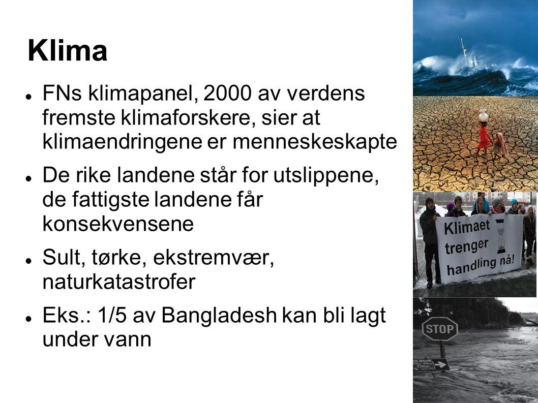 Klima FNs klimapanel, 2000 av verdens fremste klimaforskere, sier at klimaendringene er menneskeskapte.