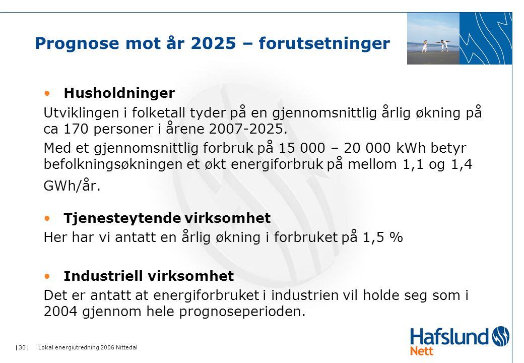 Prognose mot år 2025 – forutsetninger