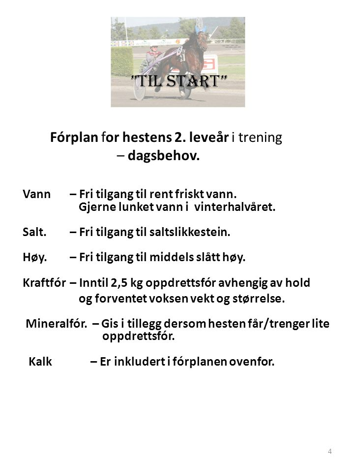Fórplan for hestens 2. leveår i trening